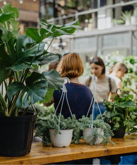 Retailsegmenten tuin en dier